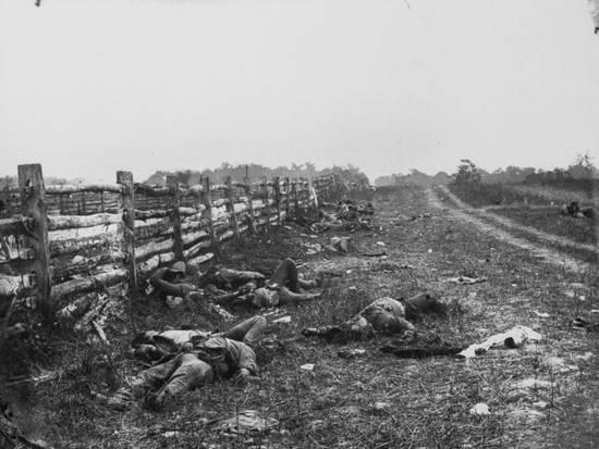 dead-confederate-soldiers-at-hagerstown-pike-battle-of-antietam-civil-war_a-l-7118103-4990176